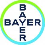 Bayer_Cross_czarny_print